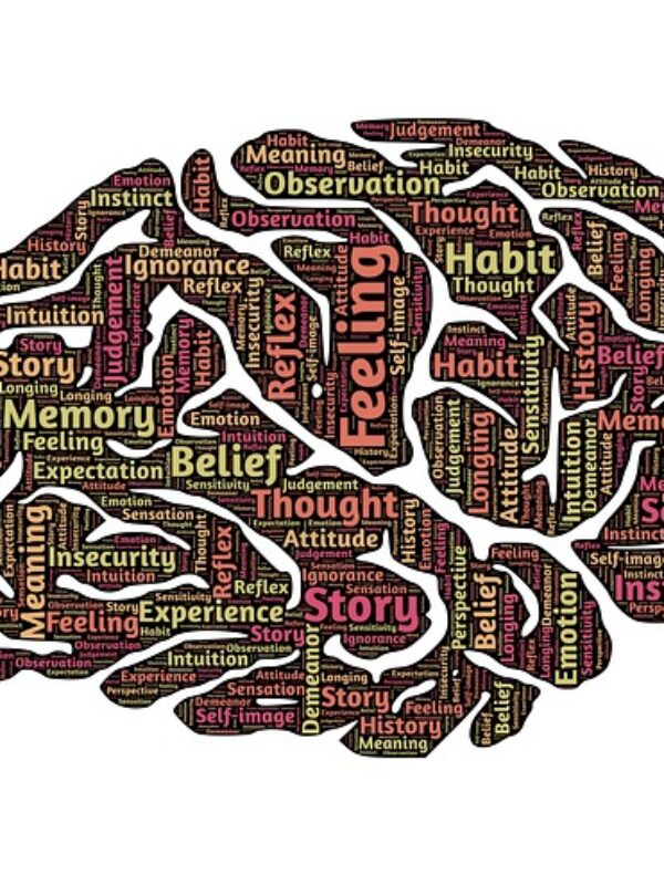 Brain - Pixabay - CC0 Public Domain
